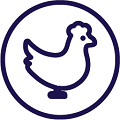 Bird welfare icon
